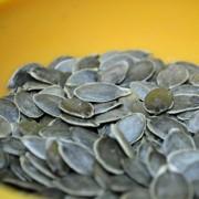 Lady Godiva Pumpkin Seed