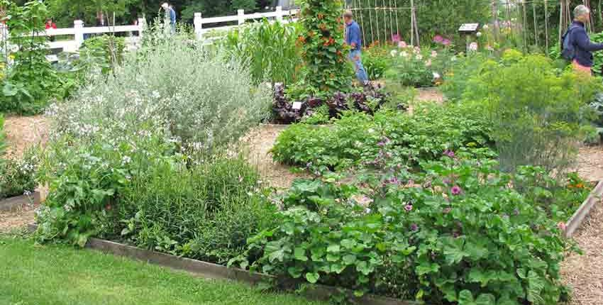 Seed Savers Exchange Garden