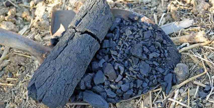 Shovelful of charcoal