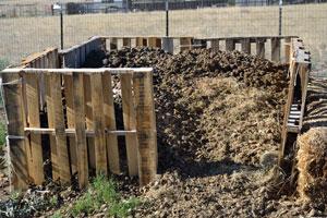 Pallet Compost