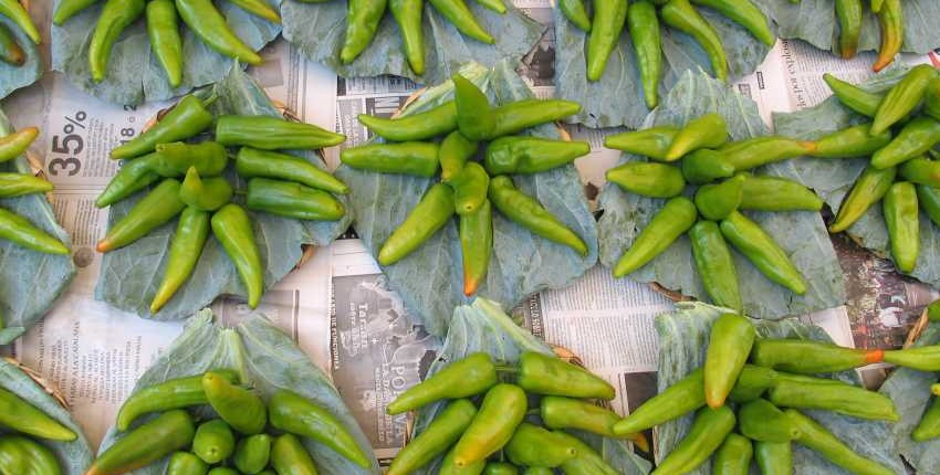 Chile de Agua For Sale