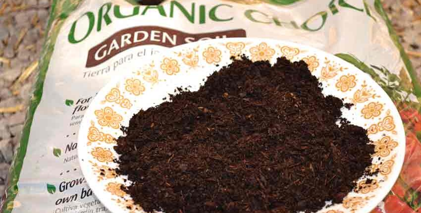 Organic Choice Potting Soil Closeup