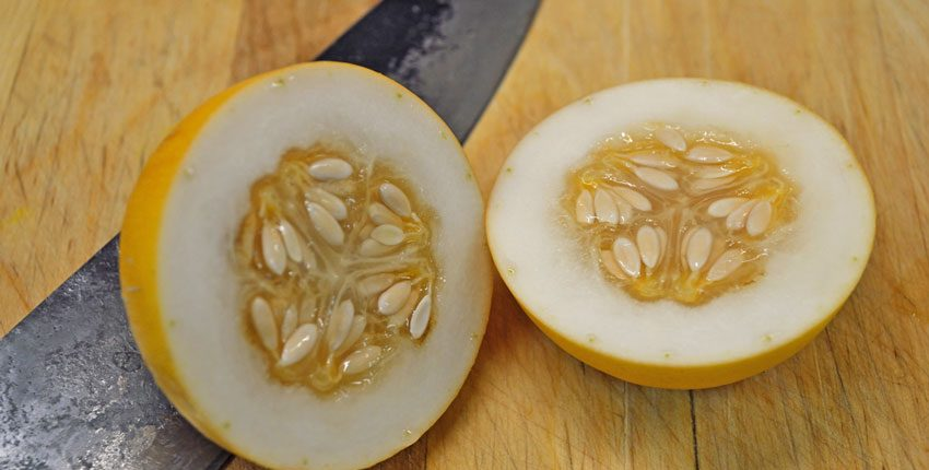Vine Peach Slice